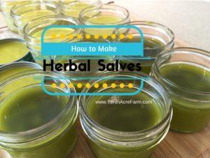 herbal-salves-1-800x600