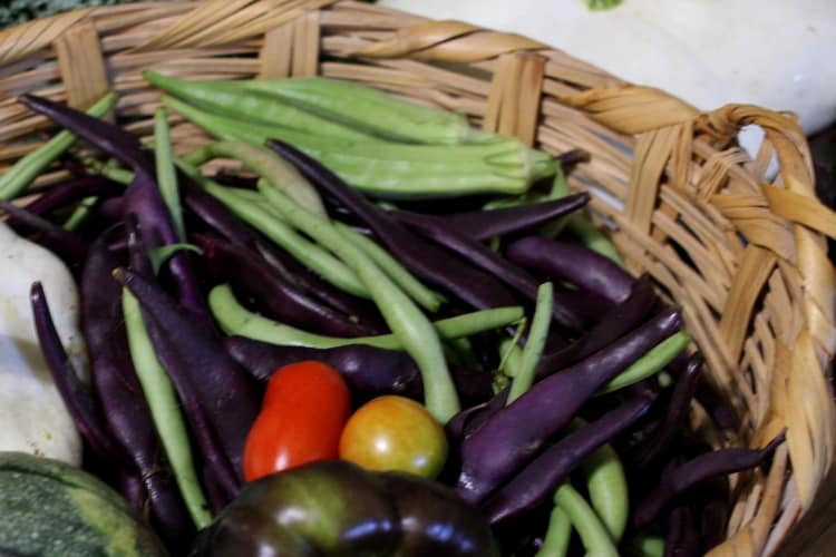 image of snap beans in basket