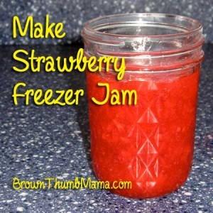strawberryjamtile-300x300