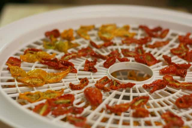 There is so much you can do with your tomato harvest. Learn how to can, freeze, dehydrate and ferment tomatoes for now and later.