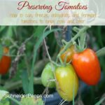 Preserving the Harvest…Tomatoes