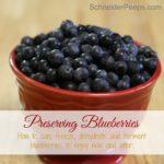 Preserving the Harvest….Blueberries
