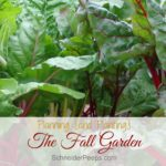 Planning {and planting} the fall garden