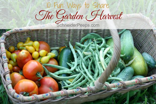 What do you do when you've eaten and preserved all you can and the garden is still producing? How about checking our these fun ideas for sharing the harvest.