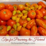 Tips for Preserving the Harvest