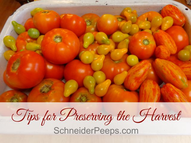 SchneiderPeeps - Tips for Preserving the Harvest