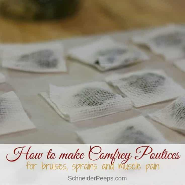 Easy Comfrey Poultice