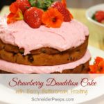 Strawberry Dandelion Cake with Berry Cream Frosting