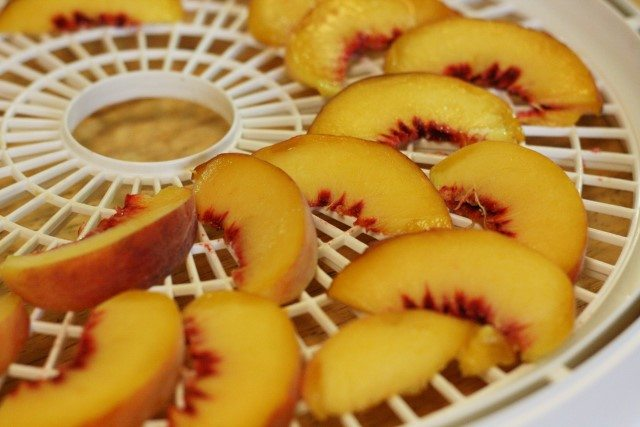 Preserving peaches is an annual event here. We preserve them by canning, freezing and dehydrating so we can have a variety throughout the year.