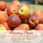 Preserving the Harvest…Peaches
