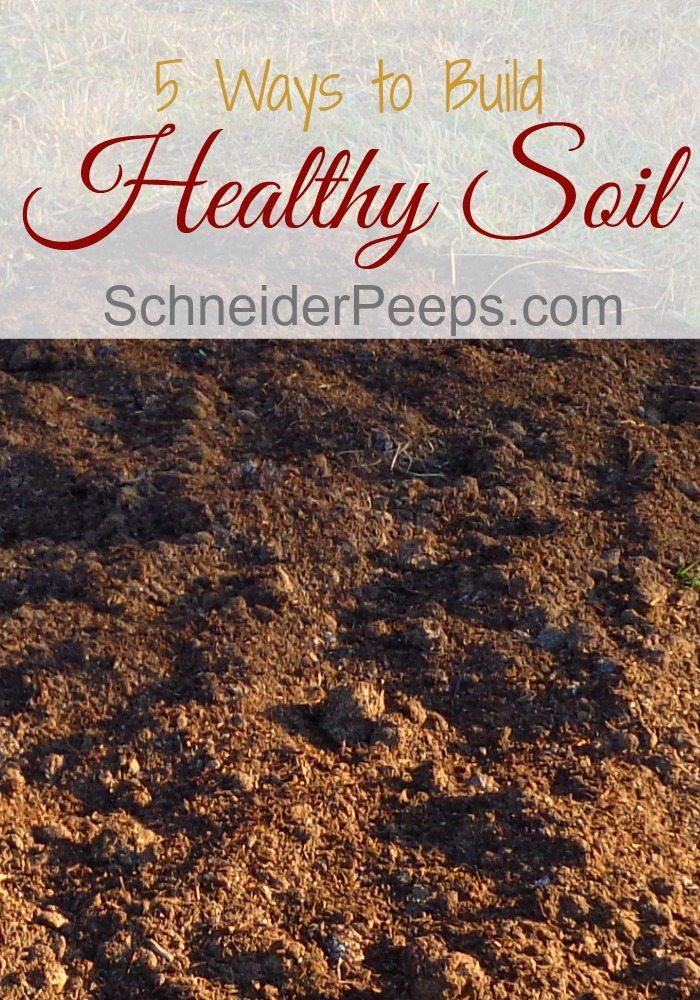 image of garden soil