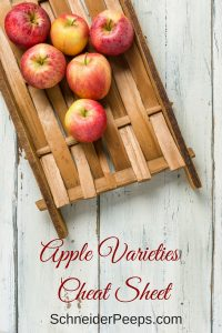Apple Varieties Cheat Sheet