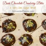 Dark Chocolate Cranberry bites