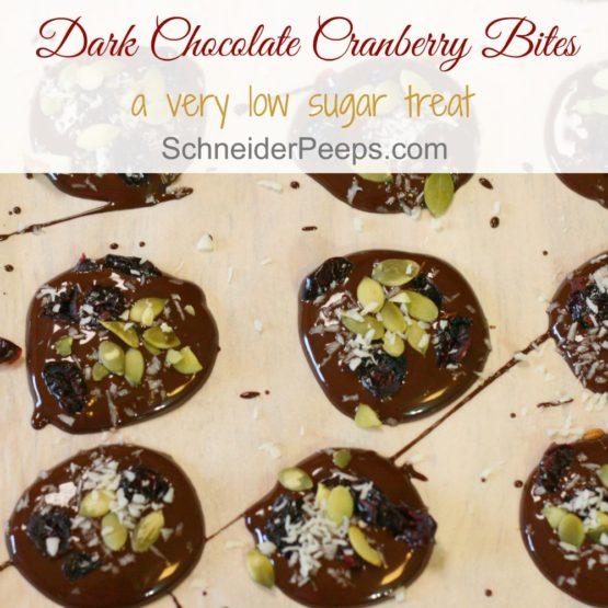 Dark Chocolate Cranberry bites
