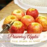 Preserving the Harvest….Apples