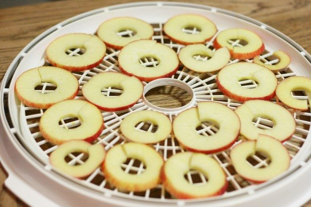 Preserving apples is a great way to have treats all year long. We like to dehydrate apples, freeze apples and can apples preserves and applesauce. Learn how to use the whole apple in one article.