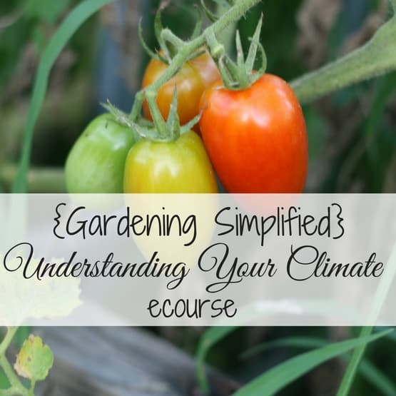 {Gardening Simplified} Understanding Your Climate