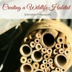 Creating a wildlife habitat garden