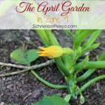 The April Garden in Zone 9