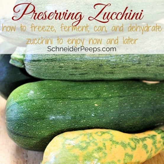 Preserving the Harvest…Zucchini