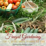 Frugal gardening tips {gardening without breaking the bank}