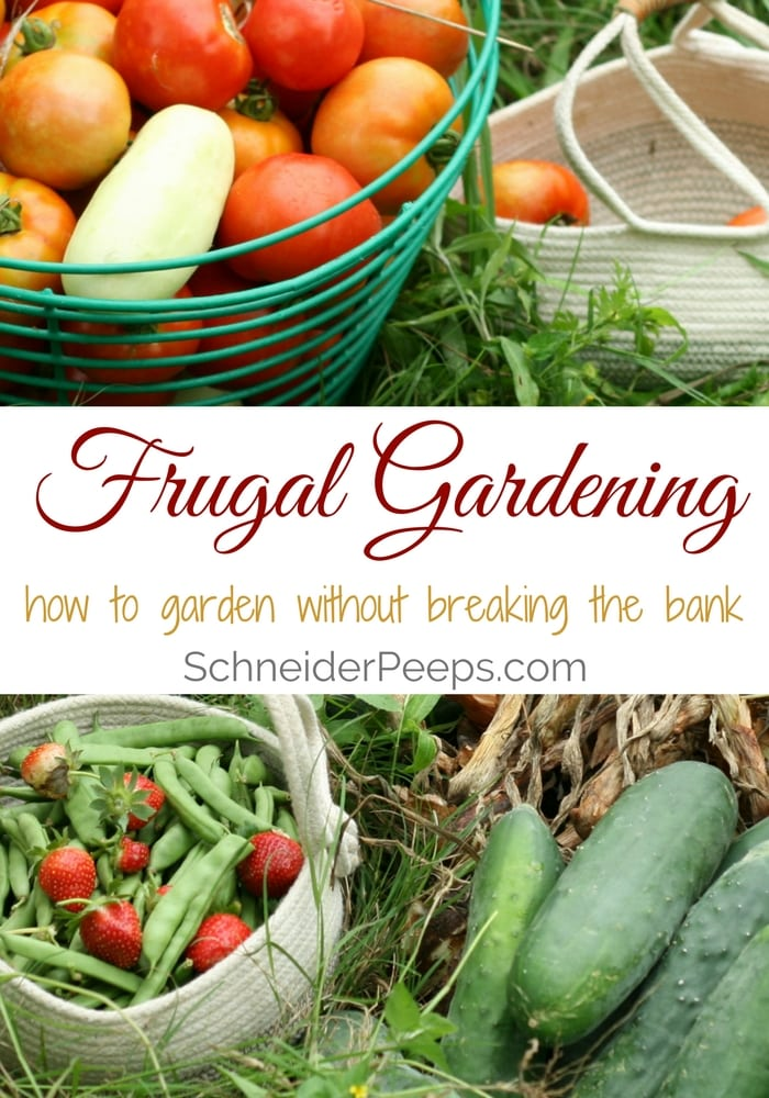 Frugal gardening is about getting the most harvest for the least amount of money. These tips will help you garden without breaking the bank.