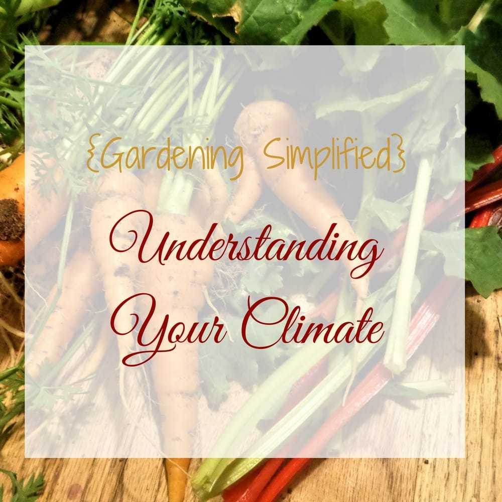 Understanding Your Climate