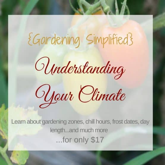 {Gardening Simplified} Understanding Your Climate