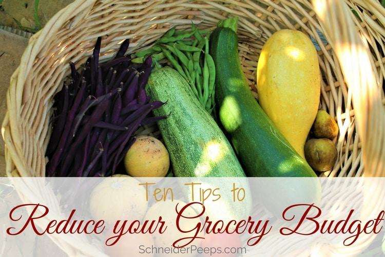 garden vegetables in basket