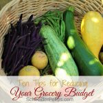 Reduce your grocery budget with zero waste kitchen tips