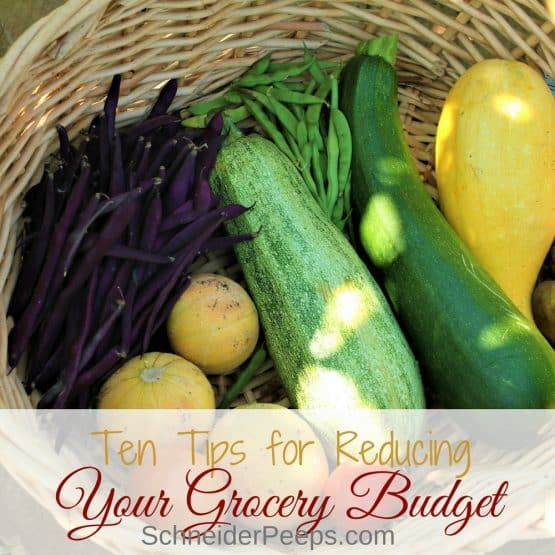 The grocery budget is won or lost in the little day to day activities. Learn how to reduce your grocery budget with these zero waste kitchen tips.