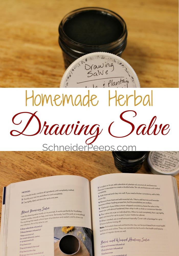 photo collage of black drawing salve and The Homesteader's Herbal Companion book