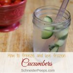 Wondering if you can freeze cucumbers? Well, yes you can! Start freezing your cucumbers today to use all year long. They can be use for cucumber infused water and a whole lot more. Learn how to freeze cucumbers in a way that makes them easy to use for a variety of dishes.
