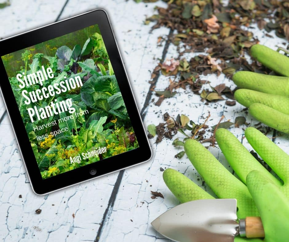 Simple Succession Planting