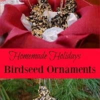 Homemade Holidays – Birdseed Ornaments