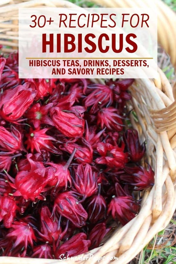 basket of red hibiscus calyx or hibiscus flowers