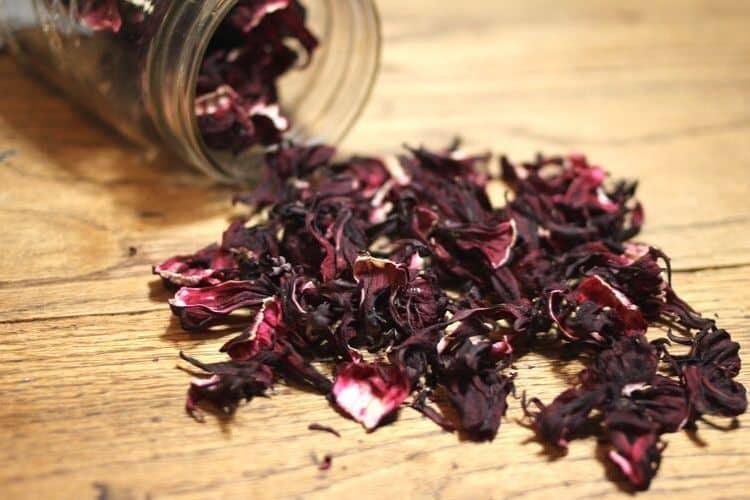 dried hibiscus flower calyx
