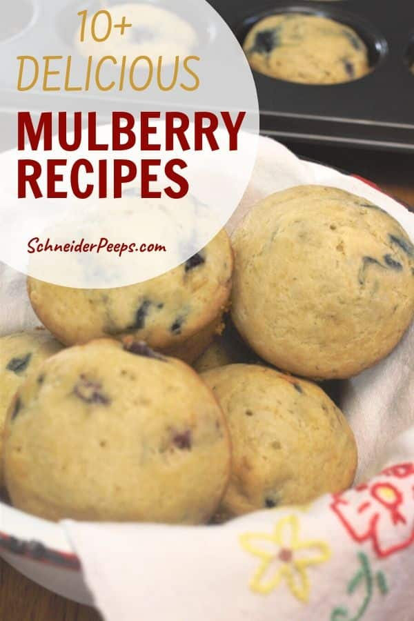 image of mulberry muffins in a white bowl with a cream napkin that has hand embroidered flowers on it. A muffin tin with mulberry muffins in it is in the background.