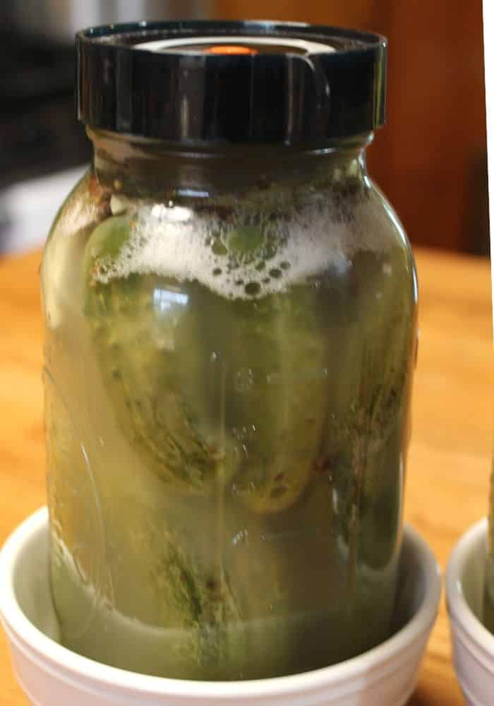 fermenting cucumbers with lots of bubbles near the lid
