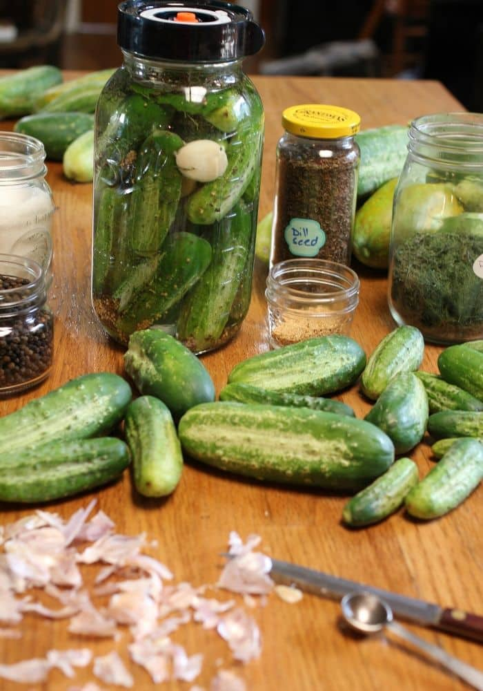 ingredients for fermented pickles on wooden table. There are cucumbers, garlic, dill, peppercorn, and mustard seed