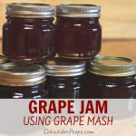 image of 5 small jars of homemade grape jam