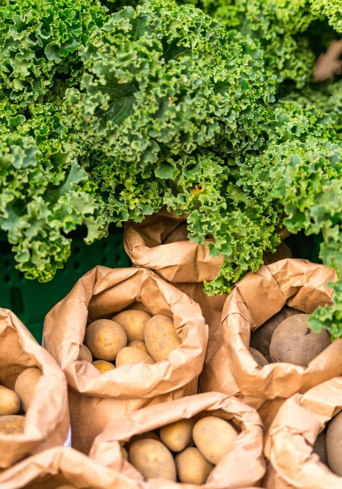 fresh potatoes in brown bags and kale