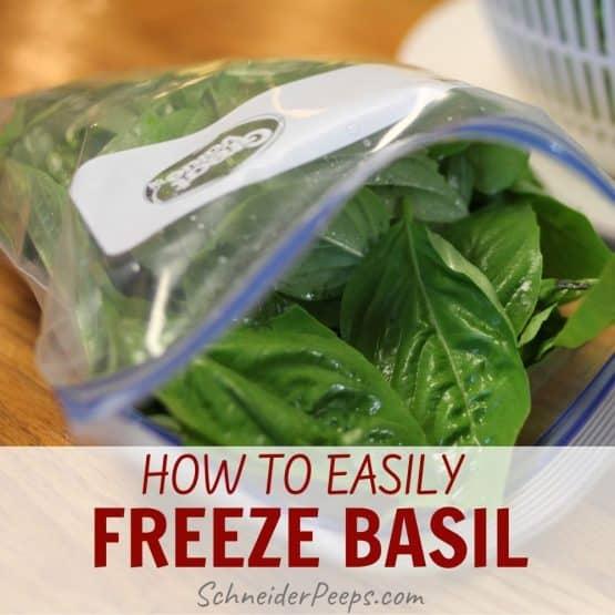 fresh basil in ziplock bag for freezing
