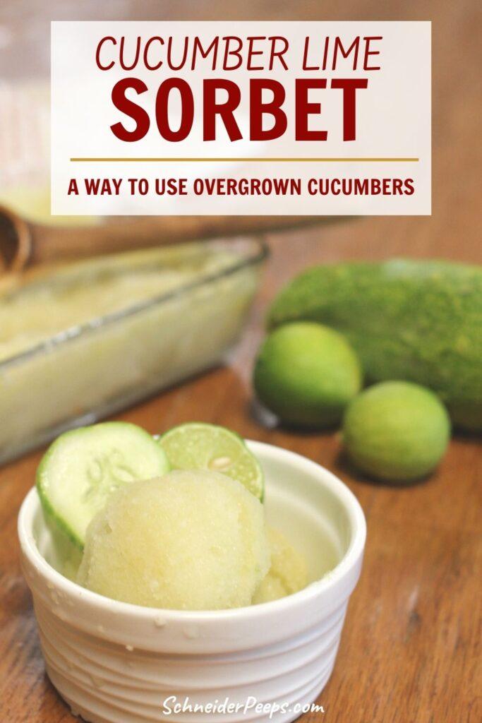 cucumber lime sorbet in white ramakin dish